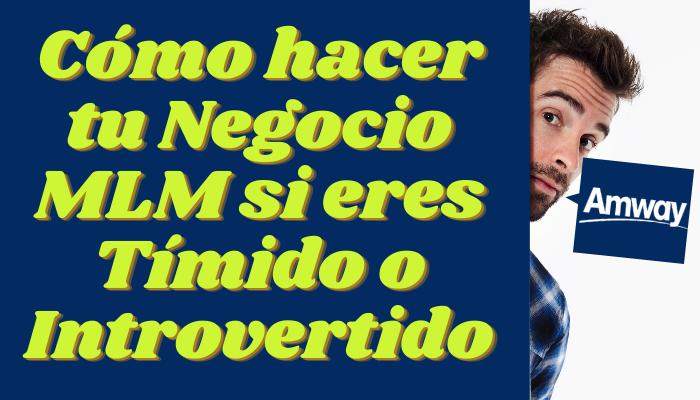 CÓMO HACER TU NEGOCIO DE NETWORKING SI ERES TÍMIDO O INTROVERTIDO